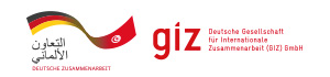 COOPERATION TECHNIQUE ALLEMANDE ( GIZ)