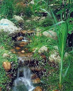 Cascade d'eau, statue