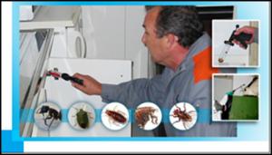 Dératisation, désinsectisation, désinfection bois et charpentes et hygiène antiparasitaires