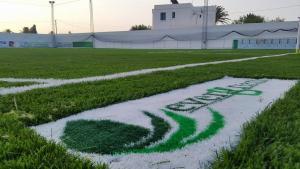 Gazon Artificiel pour terrains de foot