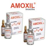 Médicaments: Injectables poudres AMOXIL