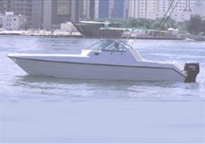 Yachts de pêche sportive Silver Craft 31 SF