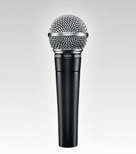 Microphone voix
