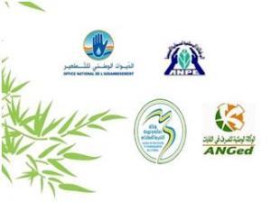 Etude impact sur l'environnement