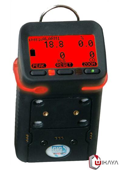 Détecteur de multi-gaz portable GFG