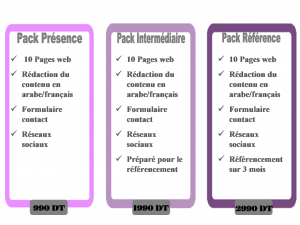 Packs Professionnels des Sites web