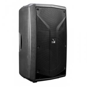 Active Processed 2-way Loudspeaker System