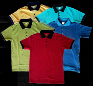 Tee shirt polo 2 couleurs