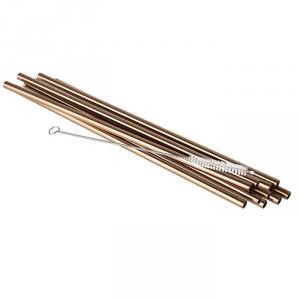Set 10 Pailles en Inox + Brosse Copper Look