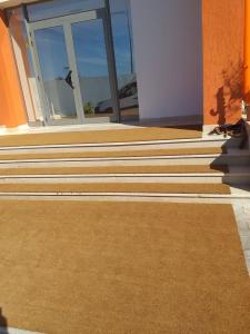 tapis brosse 5
