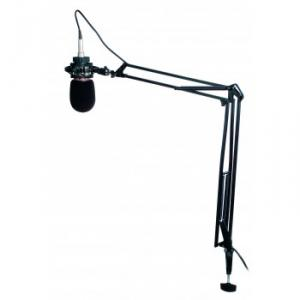 Extensible arm microphone stand