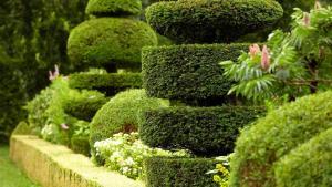 Travaux de jardinage et entretien des espaces vertes