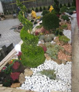 Plantes d ext rieur tunisie Plantes decoratives exterieur