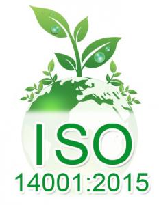 Audit environnemental et qualité