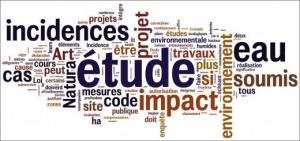 Etude d'impact environnemental et Plan de gestion environnemental et social