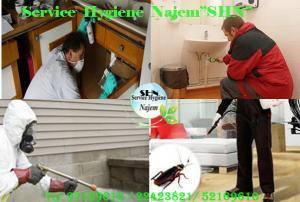 Service Hygiène Najem de Traitement tous insectes