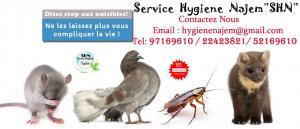 Sosiete Hygiène*SHN*LOCAL De Traitement tous cafards des nuisibles et des parasites*