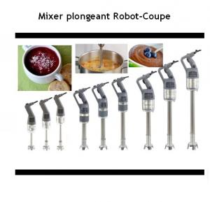 MIXER PLONGEANT - ROBOT COUPE