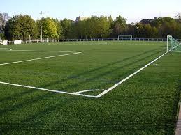 Gazon târtonné spécial terrain de foot