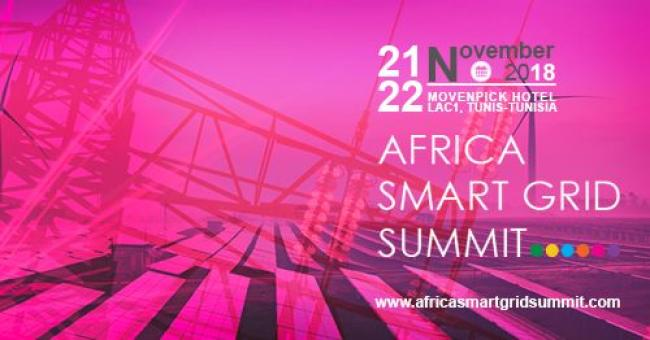 Africa Smart Grid Summit