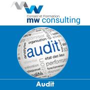 1467_audit.jpg