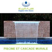 1803_piscine_et_cascade_murale.jpg