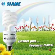 988_lampes-economiques.jpg